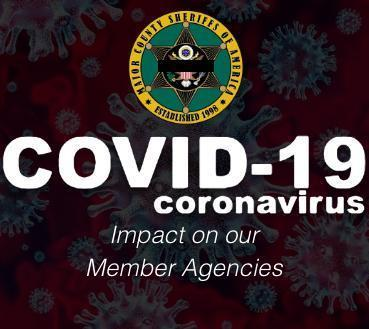 COVID Impact On Our Member Agencies - MCSA Sidebar Image